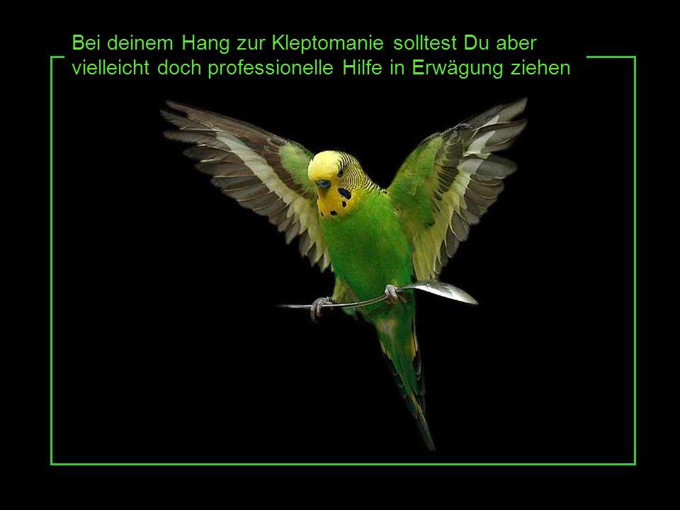 Und wer weiss, vielleicht ist Deine Angst vor dem Fliegen ja tatsächlich berechtigt