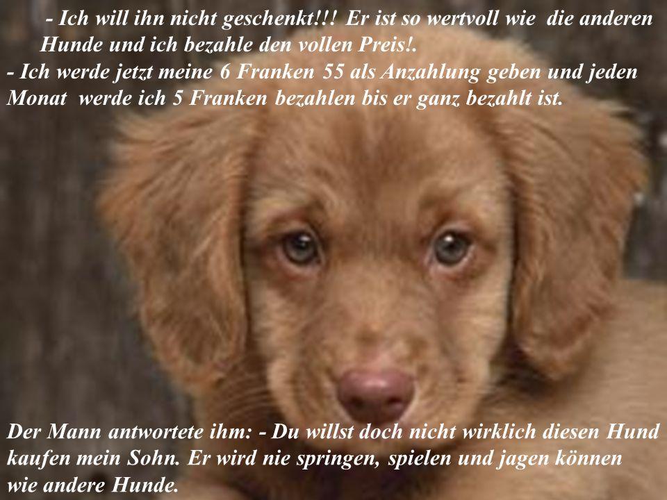 verteilt durch www.funmail2u.dewww.funmail2u.de Mit Emotion in der Stimme sagte der Junge: - Diesen Hund will ich kaufen! Der Besitzer des Geschäftes