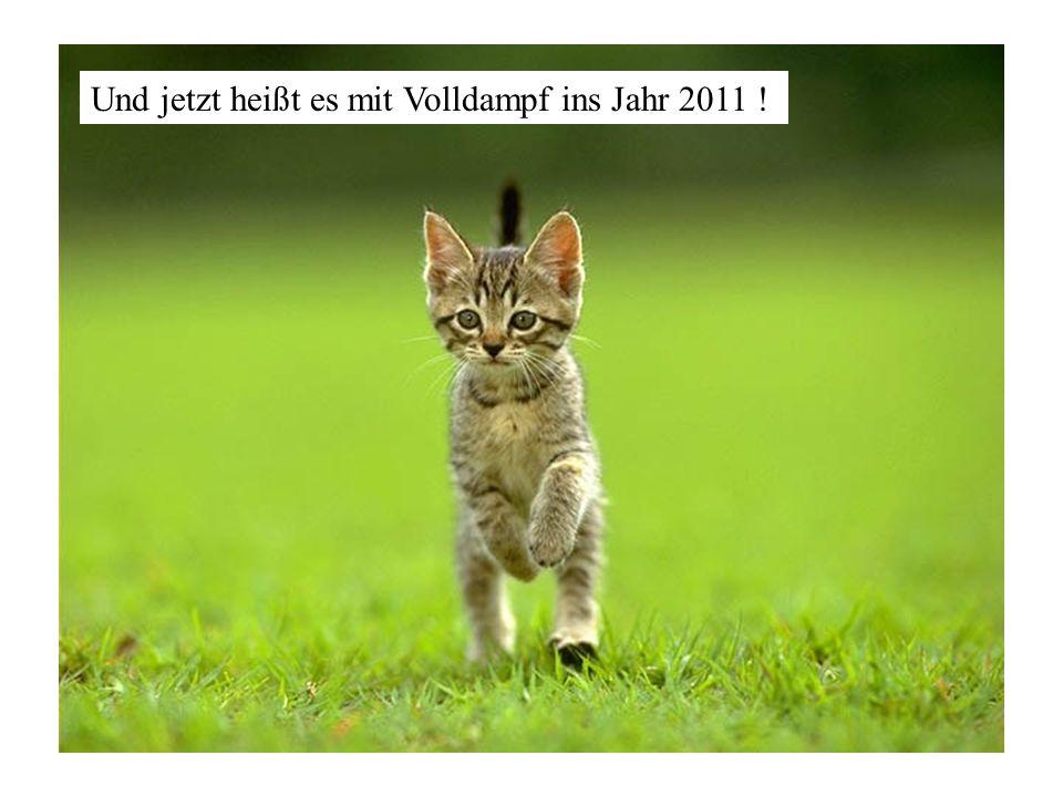 Und jetzt heißt es mit Volldampf ins Jahr 2011 !