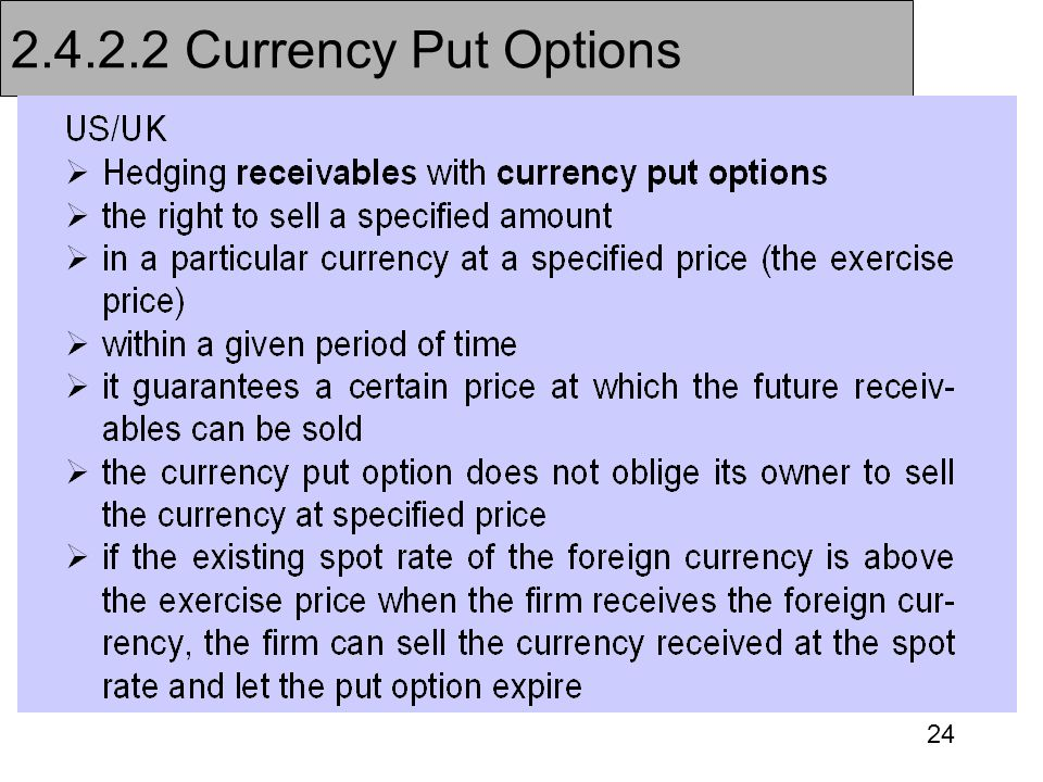 24 2.4.2.2 Currency Put Options