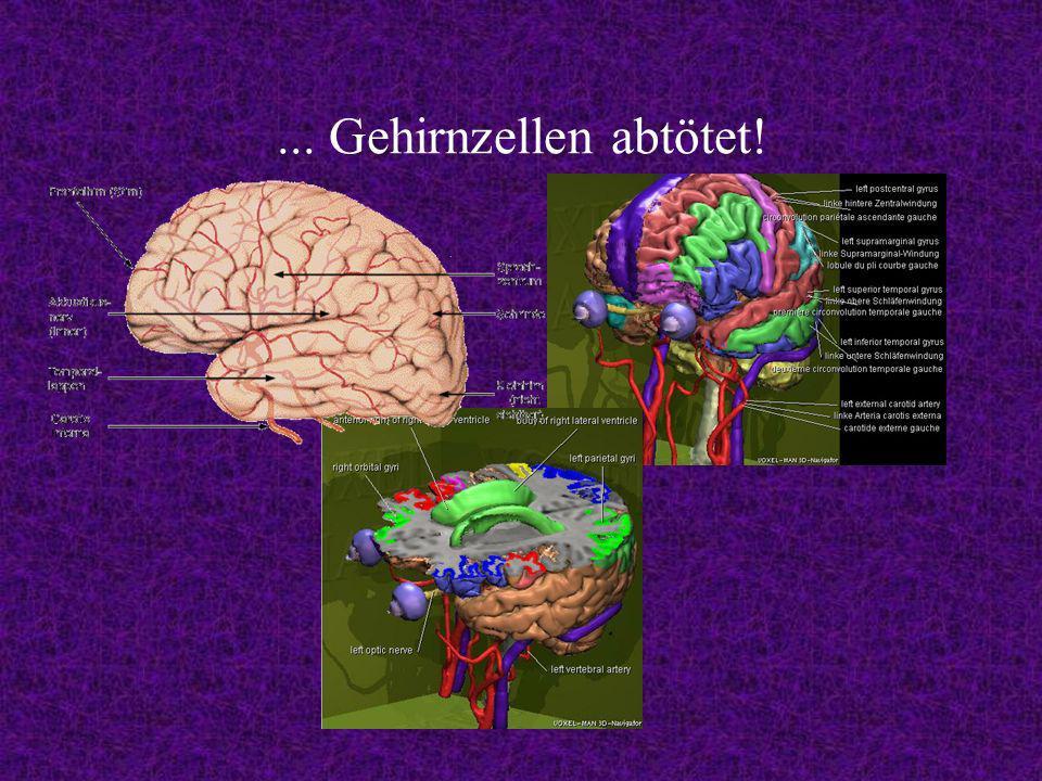 ... Gehirnzellen abtötet!