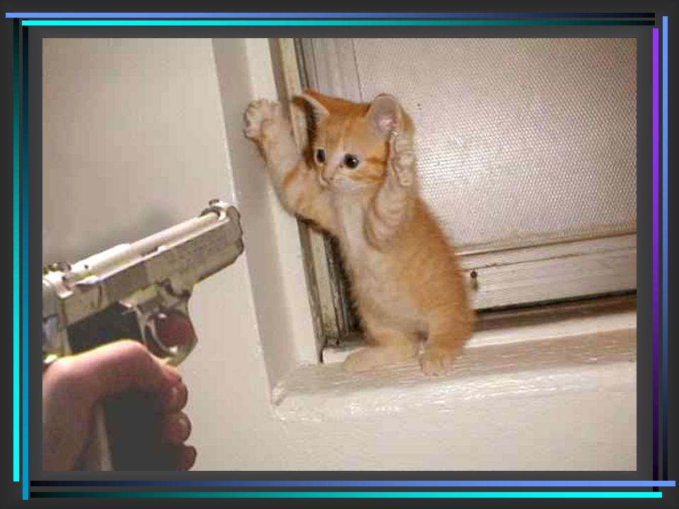 Entschlossen, dies zu verhindern, griff ich zu meiner Waffe und ging leise die Stufen zu meinem Keller hinab.