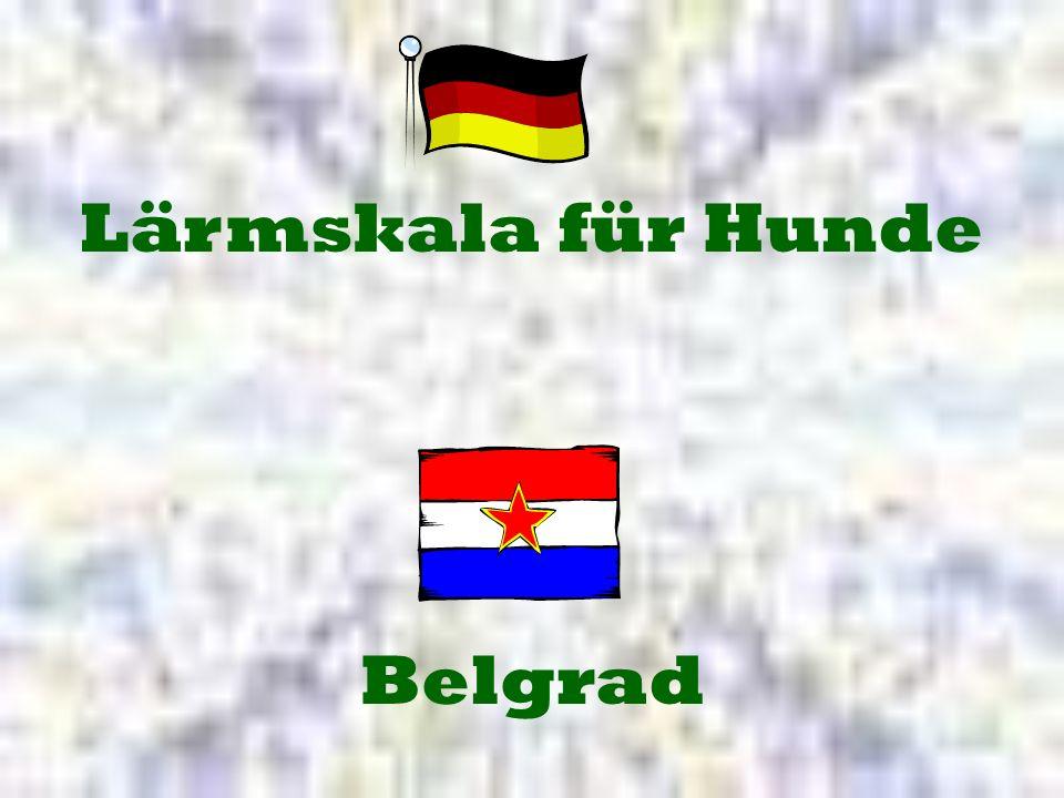 Belgrad Lärmskala für Hunde