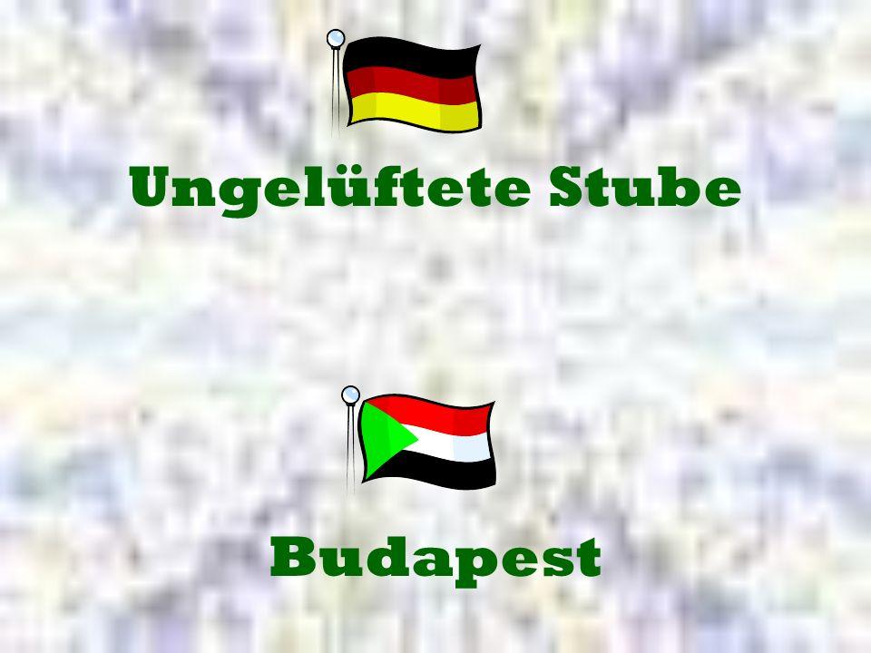 Budapest Ungelüftete Stube