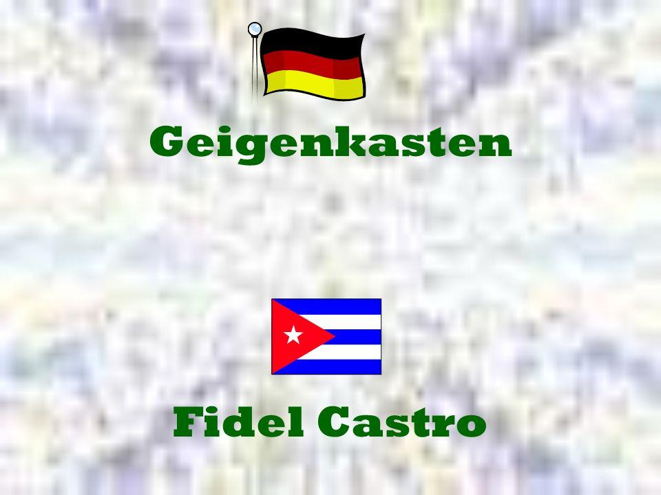 Fidel Castro Geigenkasten