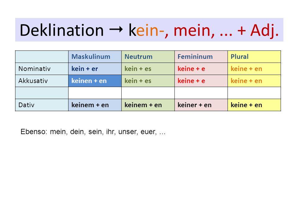 MaskulinumNeutrumFemininumPlural Nominativkein + erkein + eskeine + ekeine + en Akkusativkeinen + enkein + eskeine + ekeine + en Dativkeinem + en kein