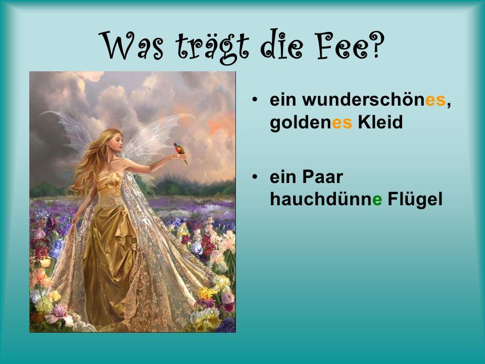 Was trägt die Fee? ein wunderschönes, goldenes Kleid ein Paar hauchdünne Flügel