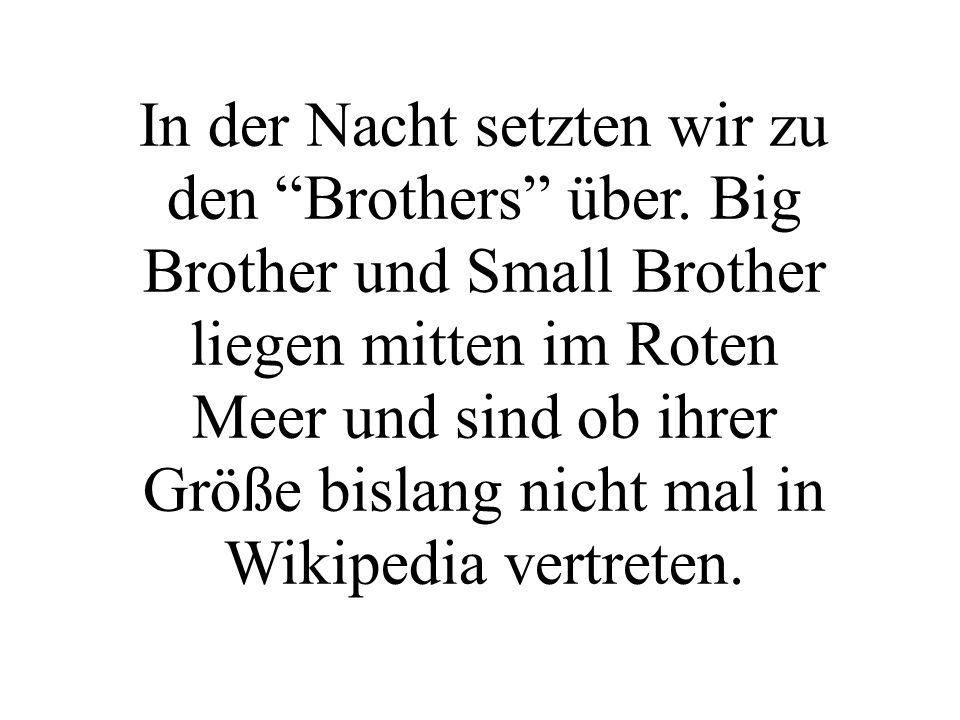 In der Nacht setzten wir zu den Brothers über. Big Brother und Small Brother liegen mitten im Roten Meer und sind ob ihrer Größe bislang nicht mal in