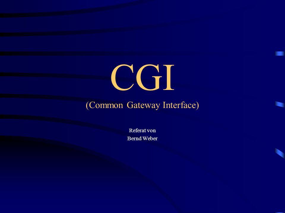 Inhalte des Referates »HTML »JavaScript »CGI (Funktionsweise) »CGI-Programmiersprachen »öffentliche CGI-Dienste »Hilfen und CGI-Scripts im Internet