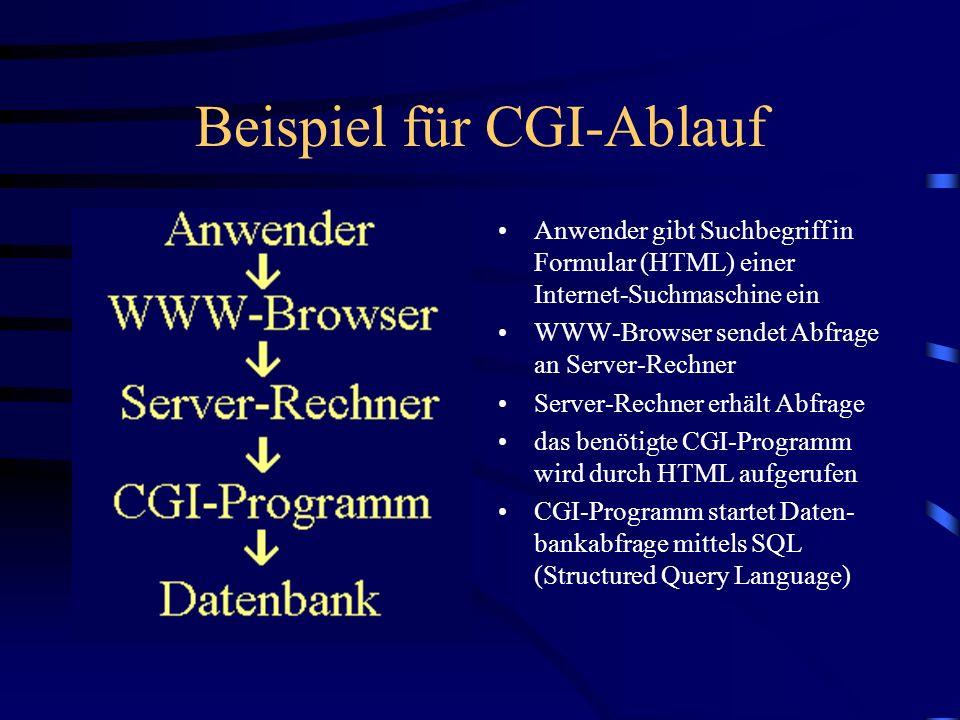 Beispiel für CGI-Ablauf Datenbank liefert das Such- ergebnis an das CGI nutzende Programm CGI-Programm erzeugt HTML- Code (Dynamic HTML) und baut Suchergebnis in Code ein Das dynamisch erweiterte HTML sendet den neuen HTML-Code an den WWW- Browser des Anwenders.