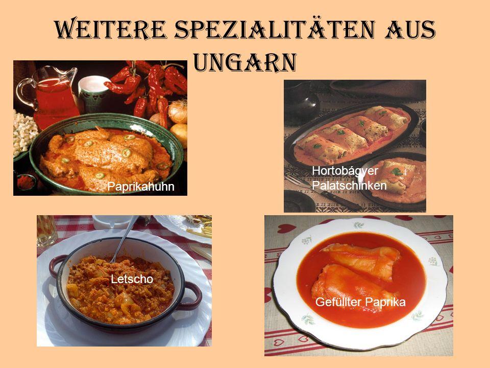 Weitere Spezialitäten aus Ungarn Paprikahuhn Hortobágyer Palatschinken Letscho Gefüllter Paprika