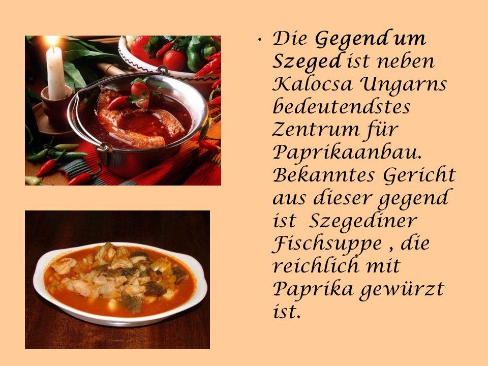 Die Gegend um Szeged ist neben Kalocsa Ungarns bedeutendstes Zentrum für Paprikaanbau.