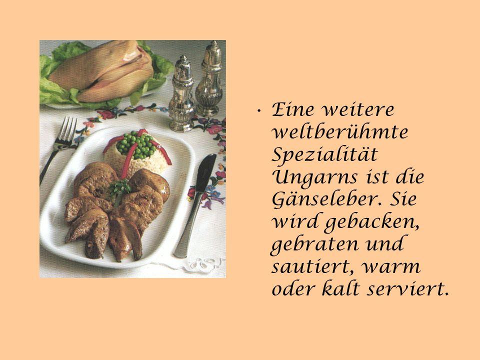 Typische Gerichte Gulasch in Ungarn eine Fleischsuppe mit Zwiebeln, Gemüsen und Kartoffeln, die die ungarischen Hirten traditionell in einem Kessel über offenem Feuer gekocht haben.