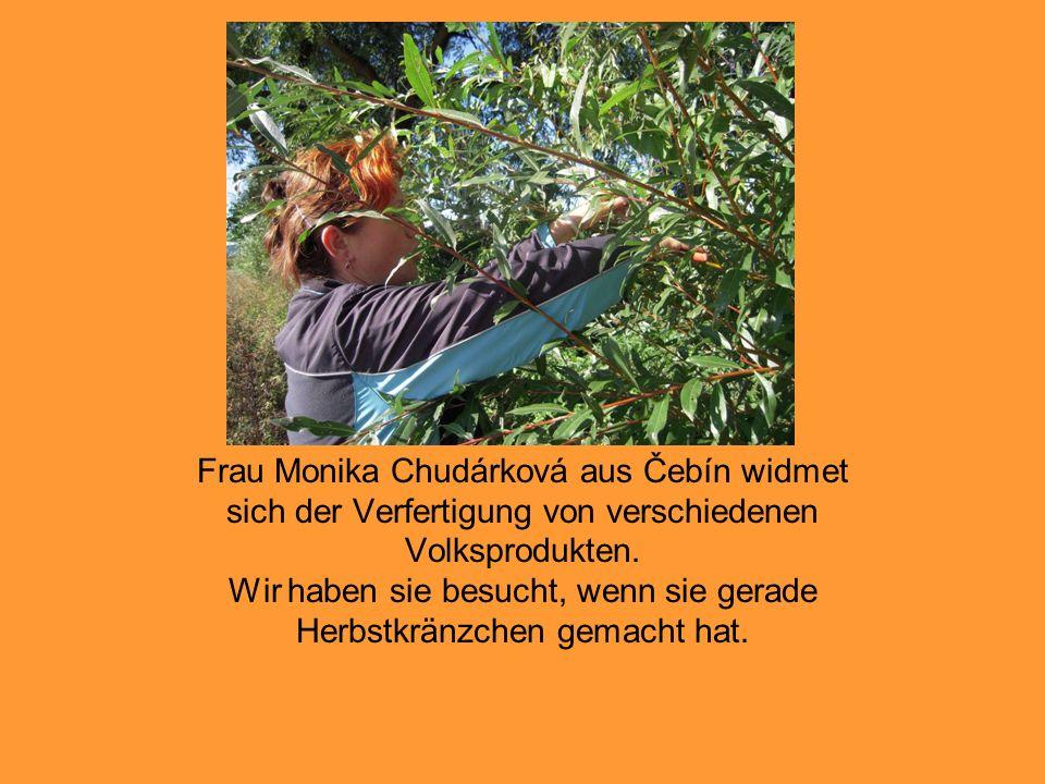 Frau Monika Chudárková aus Čebín widmet sich der Verfertigung von verschiedenen Volksprodukten. Wir haben sie besucht, wenn sie gerade Herbstkränzchen
