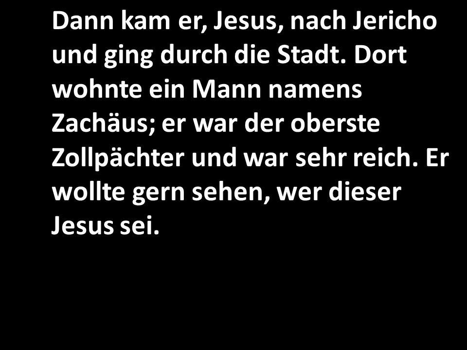Dann kam er, Jesus, nach Jericho und ging durch die Stadt.