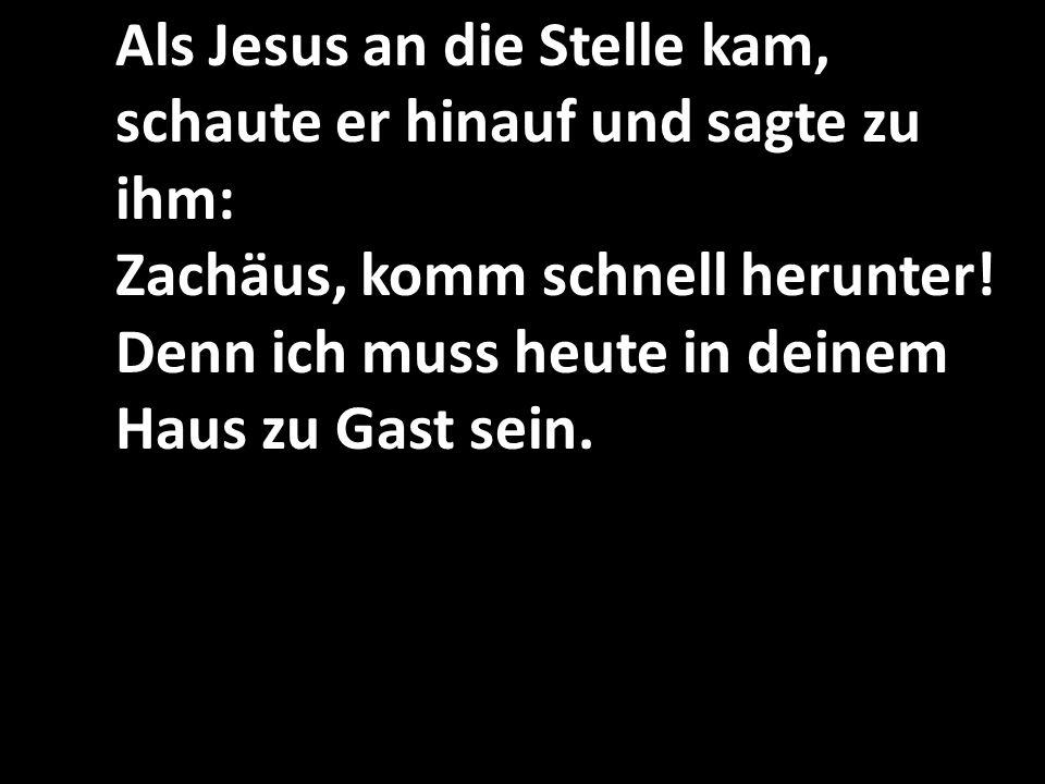 Als Jesus an die Stelle kam, schaute er hinauf und sagte zu ihm: Zachäus, komm schnell herunter.