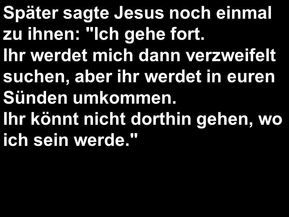 Später sagte Jesus noch einmal zu ihnen: