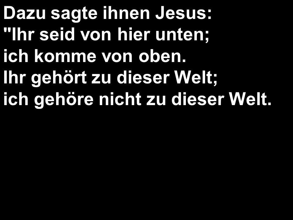 Dazu sagte ihnen Jesus: