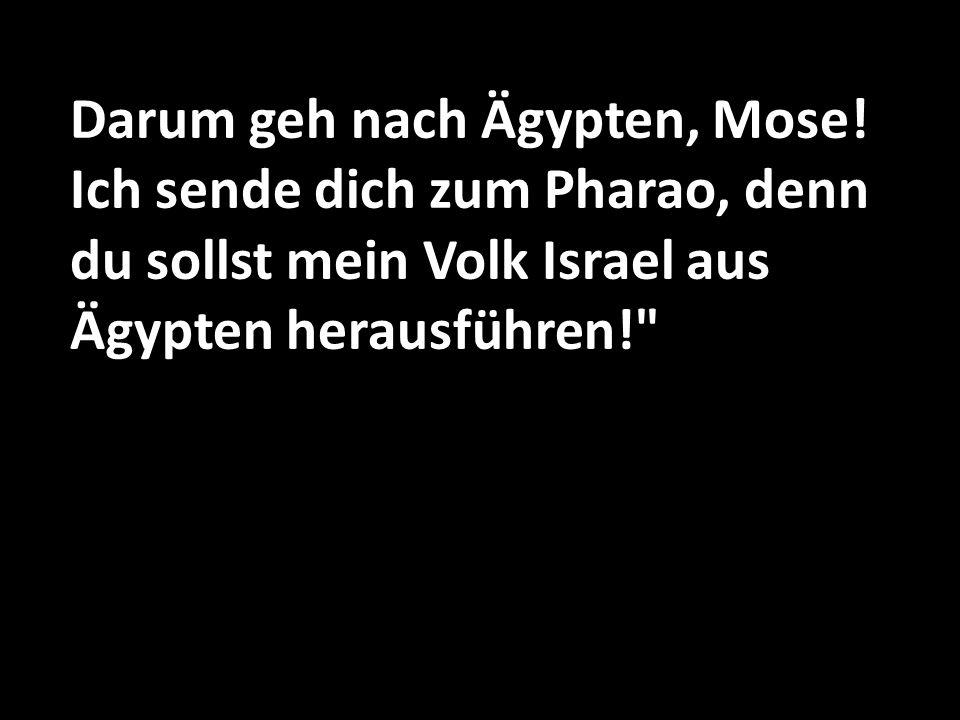 Mose entgegnete: Wenn ich zu den Israeliten komme und ihnen sage, dass der Gott ihrer Vorfahren mich zu ihnen gesandt hat, werden sie mich nach seinem Namen fragen.