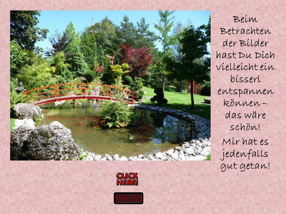 Stille, Ruhe, Einkehr, zu sich selber finden – all das kann man hier genießen! In diesem wunderschönen Meditationsgarten, der sich an einem alten Wall