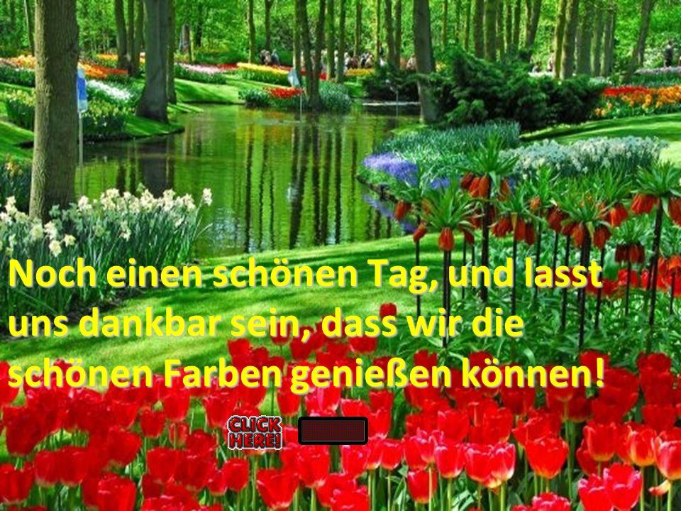.. Noch einen schönen Tag, und lasst uns dankbar sein, dass wir die schönen Farben genießen können!