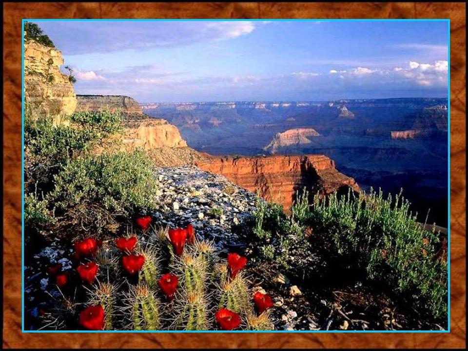 Die zerklüftete Landschaft des Grand Canyon.