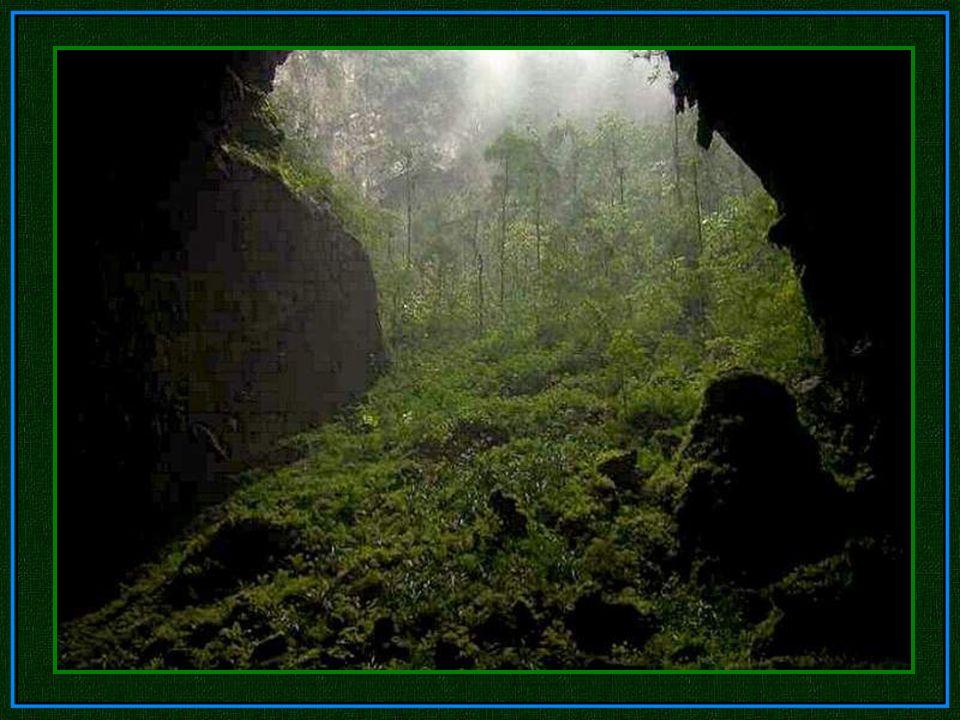 Versteckt im zerklüfteten Phong Nha-Ke Bang Nationalpark nahe der Grenze zu Laos, ist diese Höhle Teil eines Netzwerks von 150 ähnlicher Höhlen in den