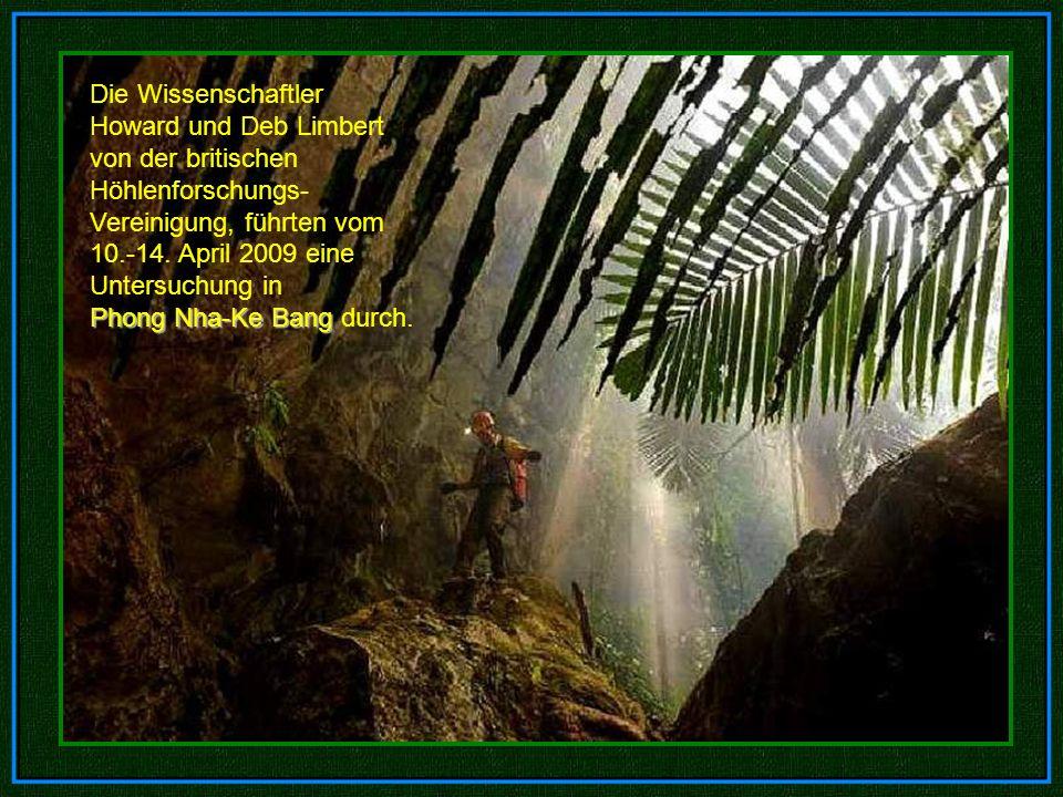 i n s g e a m t 6, 5 k m l a n g Eingestürzte Dolinen ein Mini-Dschungel 400 Meter unter der Erde An dieser Darstellung kann man schon ersehen, welche