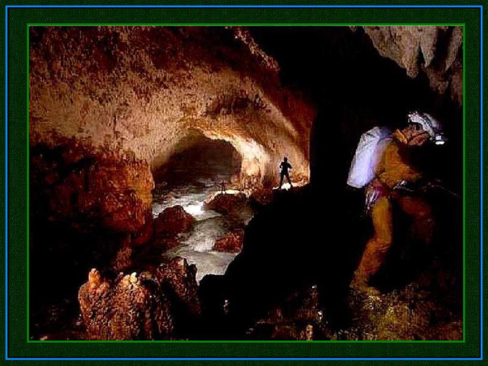 National Geographic National Geographic schickte im Jahr 2010 ein Team in die Höhle, um diese zu dokumentieren. National Geographic schickte im Jahr 2