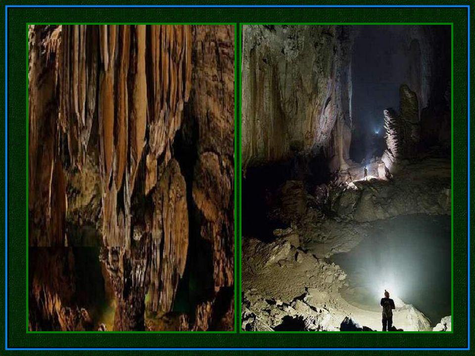 Das Loch in der Decke, ist mindestens 300 Meter breit. Das Licht, dringt tief in die Höhle, zeigt zum ersten Mal die irren Proportionen der Hang Son D