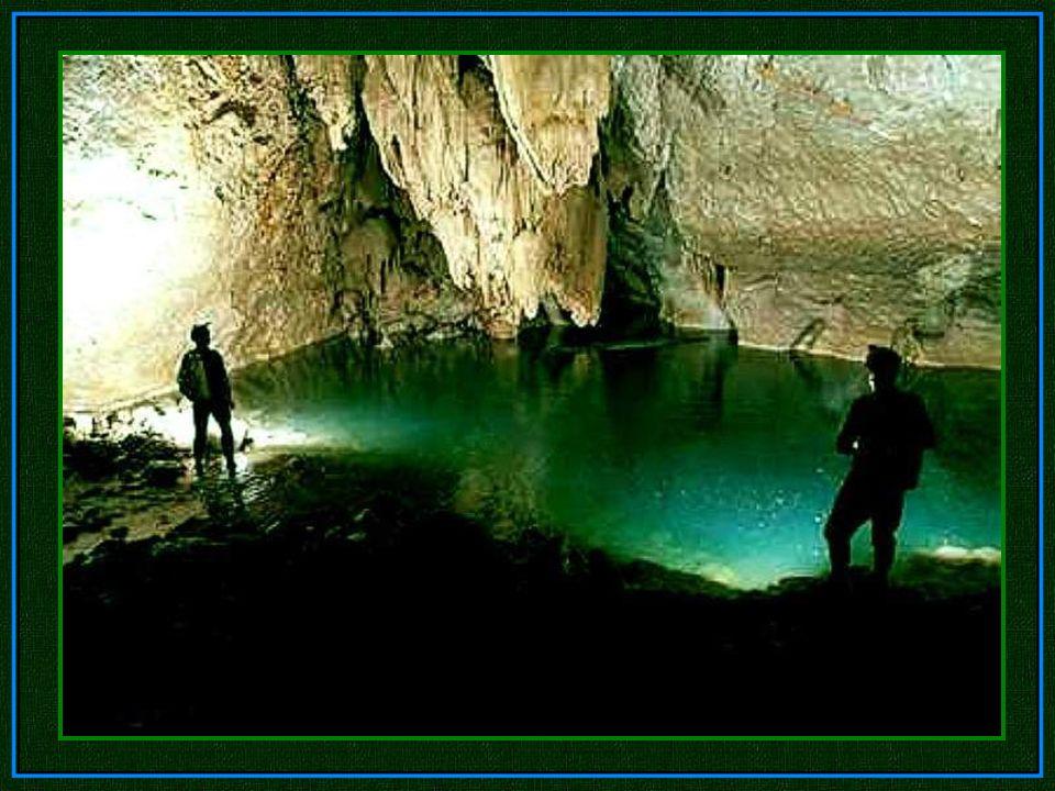 Warum wurde die Höhle so groß? Die perfekte Formel war: riesige Mengen an Wasser, tropisches Klima und der Fluss folgte einer schmalen Verwerfungslini