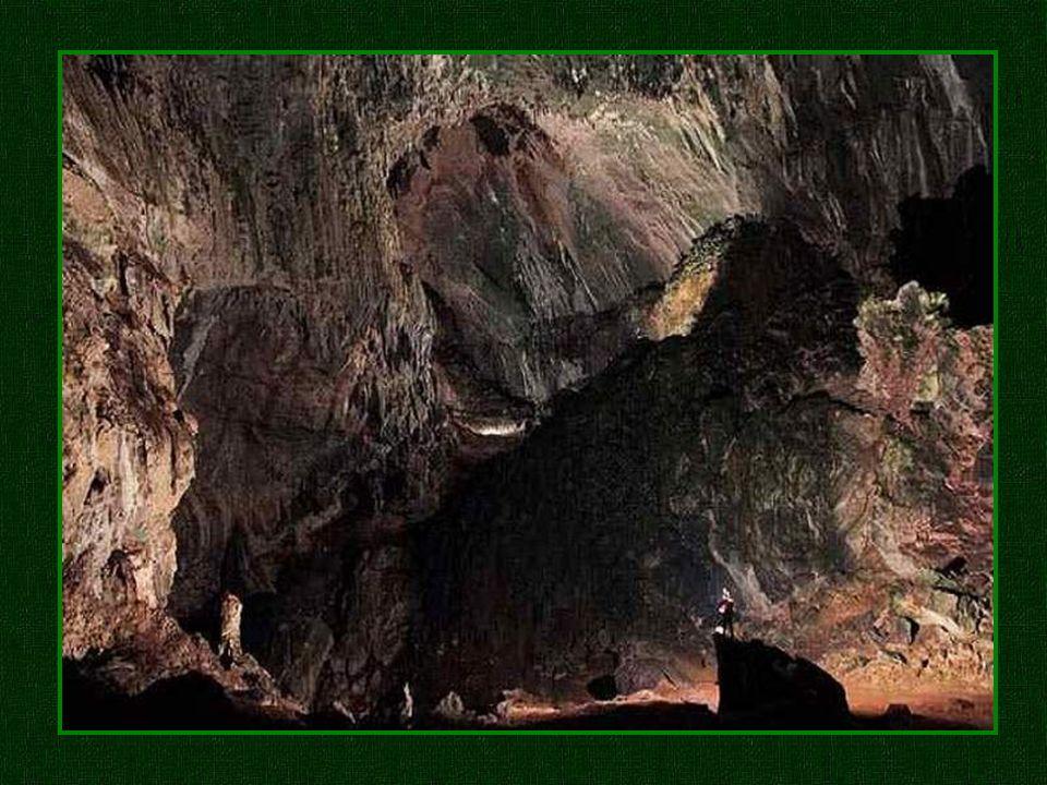 Wie ein versteinerter Wasserfall, zieht eine Kaskade von granuliertem Kalkstein, begrünt von Algen, ehrfürchtige Höhlenforscher in ihren Bann. Wie ein