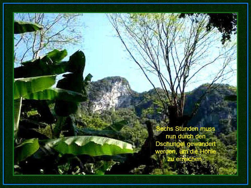 Die große Mauer von Vietnam Nach der Erkundung des sechs einhalb Kilometer langen Höhlendurchganges, war ihr Weg durch einen gigantischen Kalkstein- Felsen versperrt, den sie Die große Mauer von Vietnam nannten.