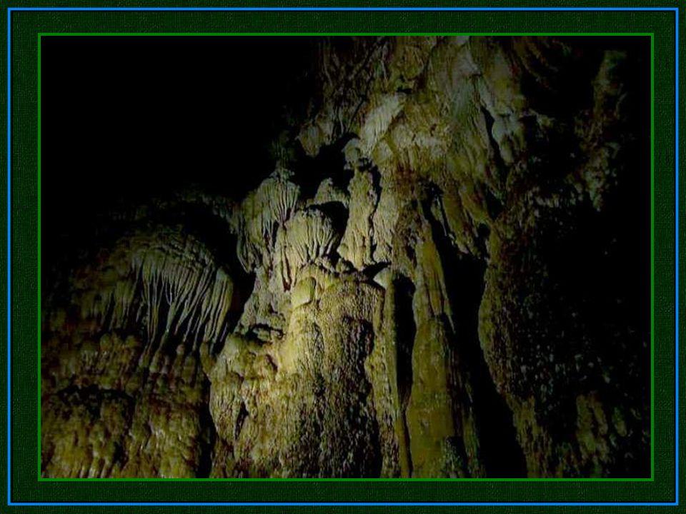 Die große Mauer von Vietnam Nach der Erkundung des sechs einhalb Kilometer langen Höhlendurchganges, war ihr Weg durch einen gigantischen Kalkstein- F