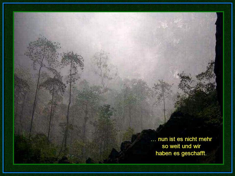 National Geographic National Geographic schickte im Jahr 2010 ein Team in die Höhle, um diese zu dokumentieren.