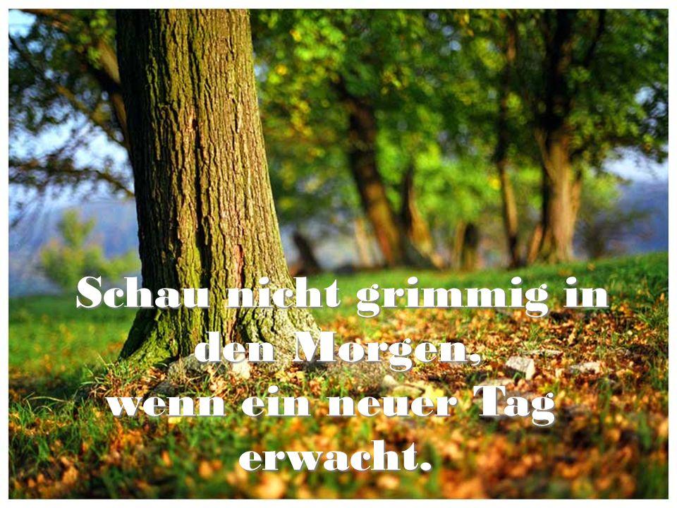Schau nicht grimmig in Schau nicht grimmig in den Morgen, wenn ein neuer Tag den Morgen, wenn ein neuer Tag erwacht.