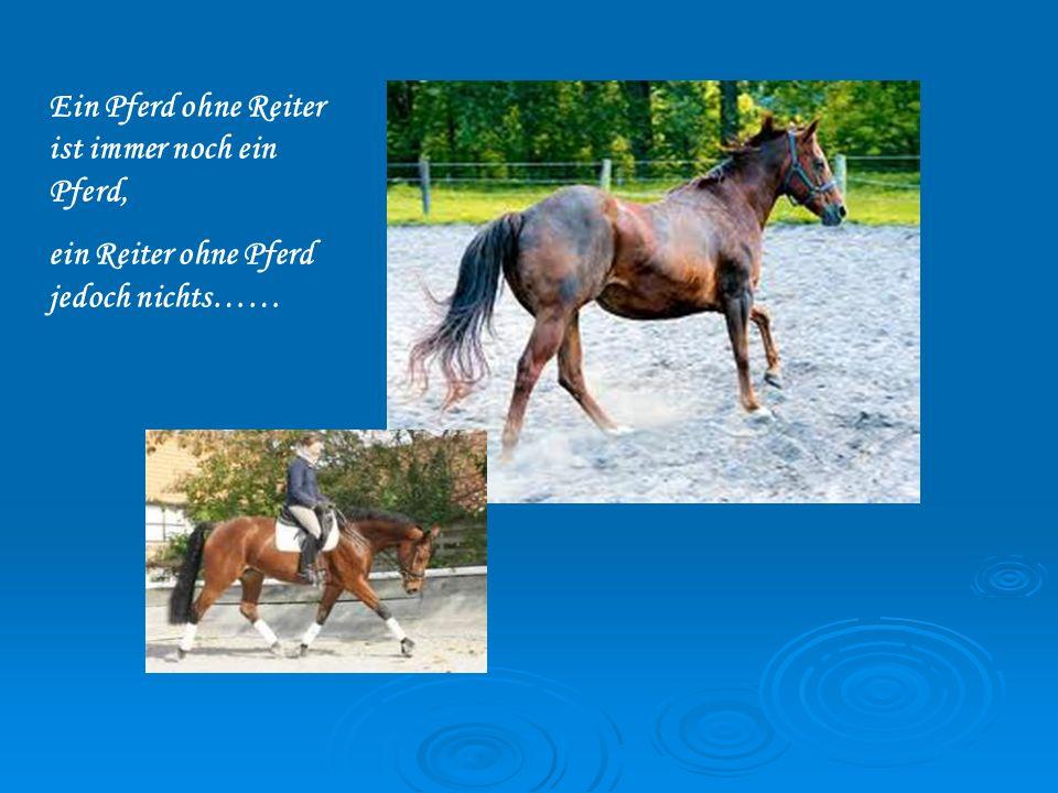 Ein Pferd ohne Reiter ist immer noch ein Pferd, ein Reiter ohne Pferd jedoch nichts……