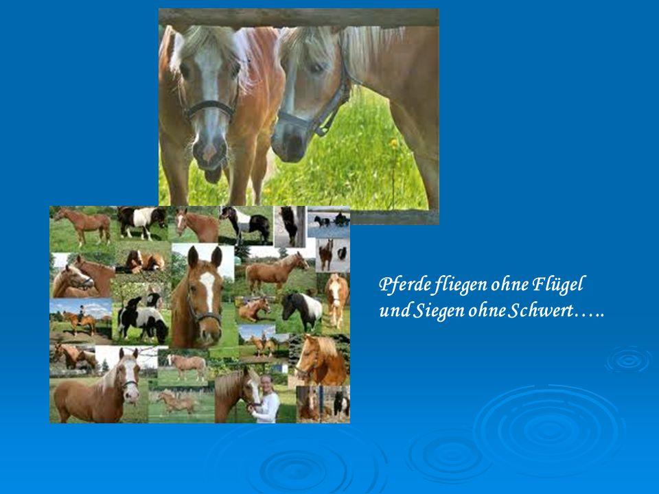 Pferde fliegen ohne Flügel und Siegen ohne Schwert…..