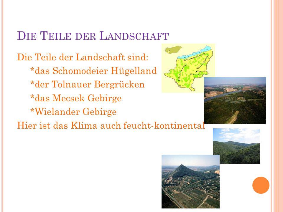 D IE T EILE DER L ANDSCHAFT Die Teile der Landschaft sind: *das Schomodeier Hügelland *der Tolnauer Bergrücken *das Mecsek Gebirge *Wielander Gebirge Hier ist das Klima auch feucht-kontinental