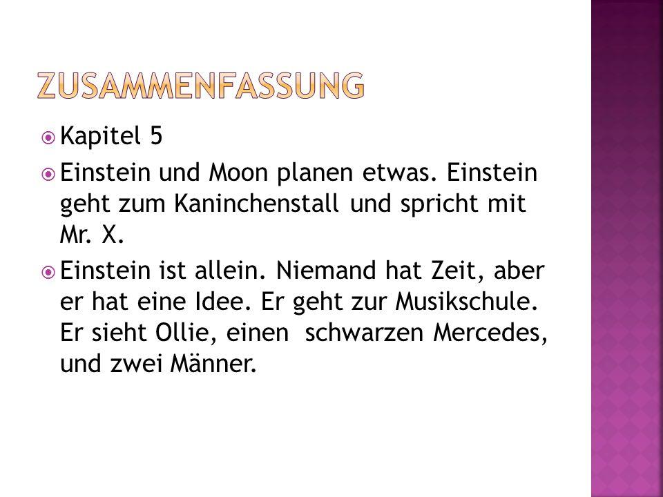 Kapitel 5 Einstein und Moon planen etwas. Einstein geht zum Kaninchenstall und spricht mit Mr. X. Einstein ist allein. Niemand hat Zeit, aber er hat e