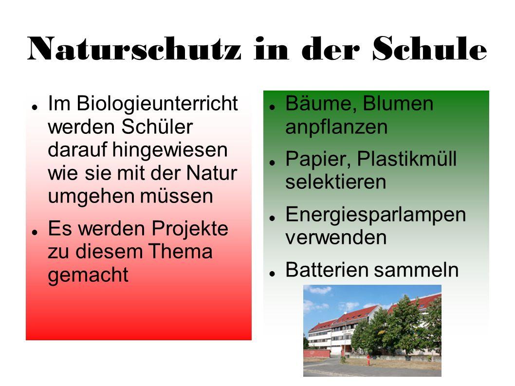Naturschutz in der Schule Im Biologieunterricht werden Schüler darauf hingewiesen wie sie mit der Natur umgehen müssen Es werden Projekte zu diesem Th