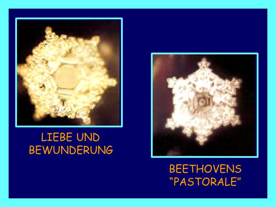 Wassermolekül, demTONFALL DER STIMME ADOLF HITLERS ausgesetzt. Wassermolekül, der Klangfarbe einerMORDDROHUNG ausgesetzt.