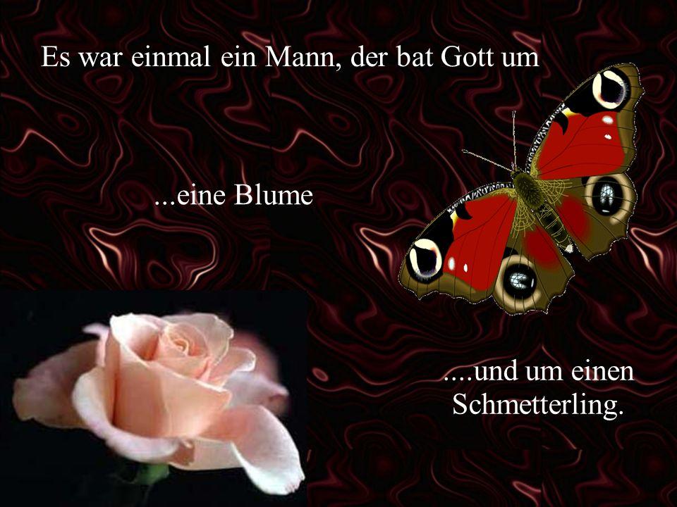 Es war einmal ein Mann, der bat Gott um...eine Blume....und um einen Schmetterling.