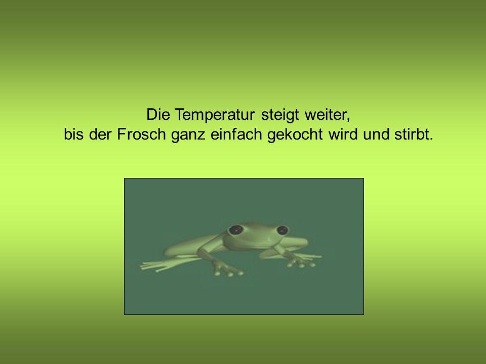 Nun ist das Wasser wirklich heiss, und der Frosch beginnt es als unangenehm zu empfinden, ist aber sehr schwach.