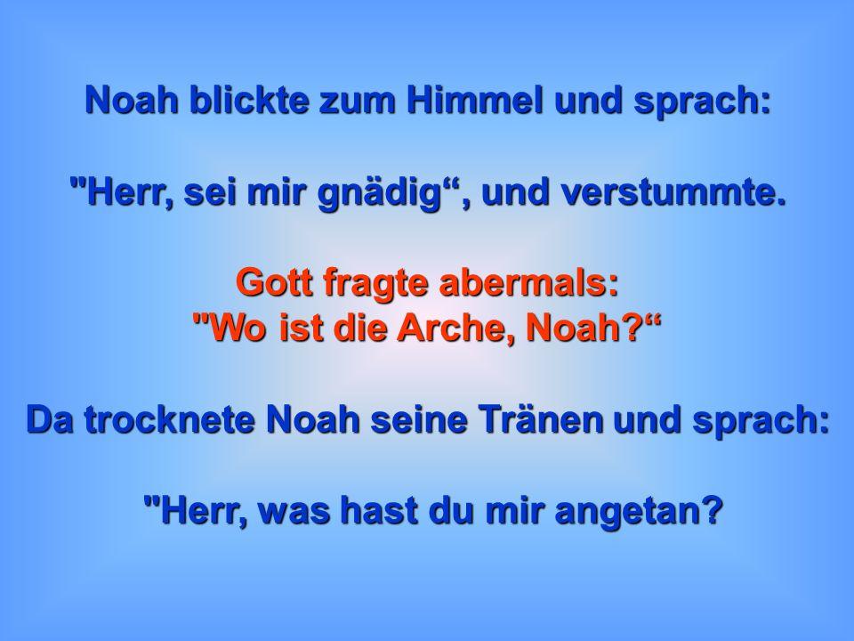 Nach sechs Monaten zogen dunkle Wolken auf und es begann zu regnen. Noah Noah sah in seinen Vorgarten und weinte: da war keine Arche!