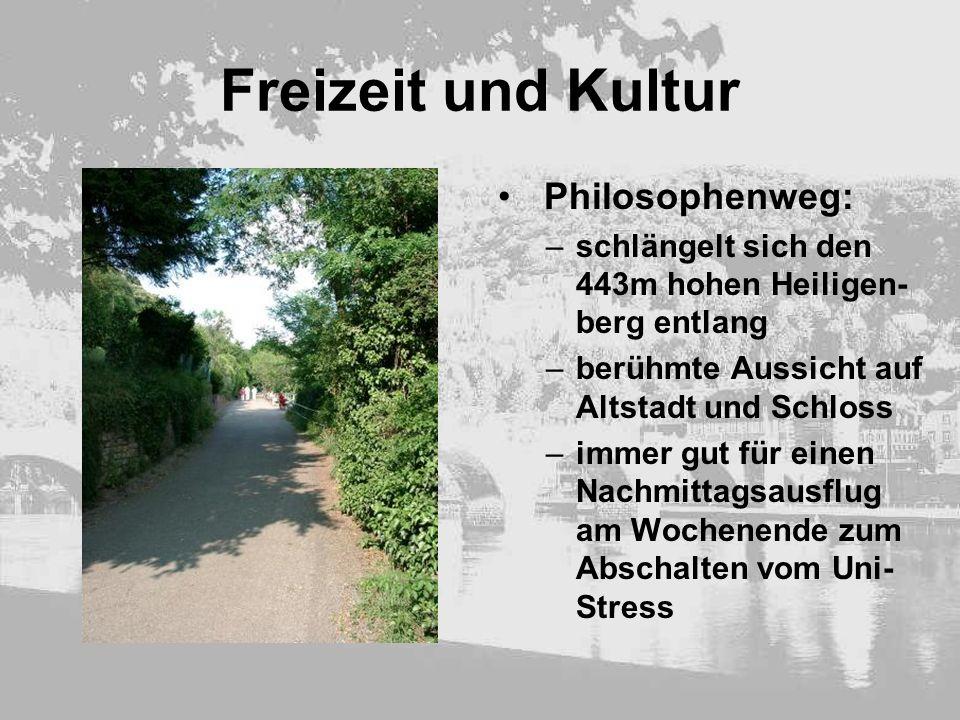 Freizeit und Kultur Philosophenweg: –schlängelt sich den 443m hohen Heiligen- berg entlang –berühmte Aussicht auf Altstadt und Schloss –immer gut für