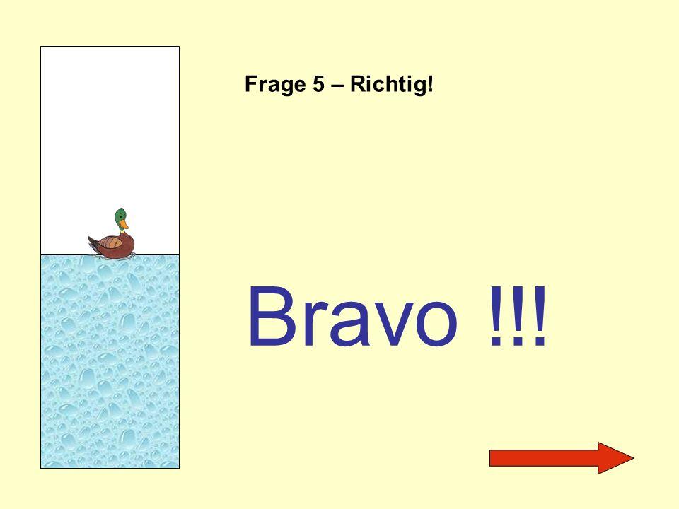 Frage 5 – Richtig! Bravo !!!
