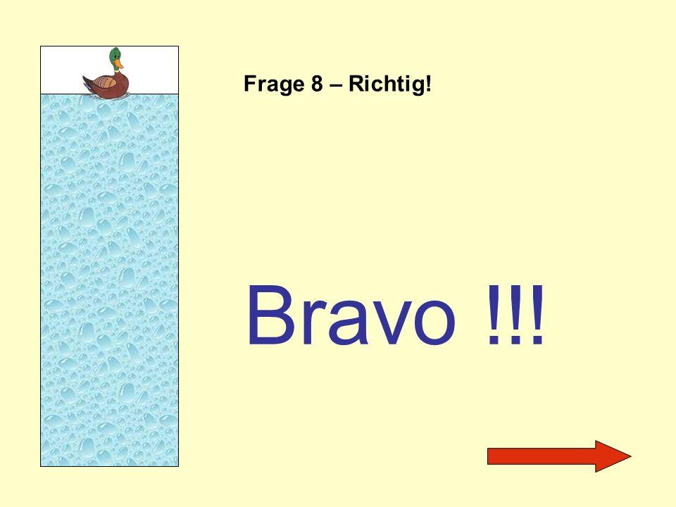 Frage 8 – Richtig! Bravo !!!