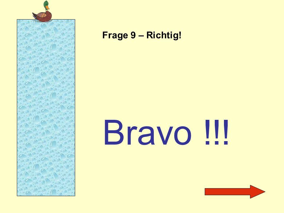 Frage 9 – Richtig! Bravo !!!