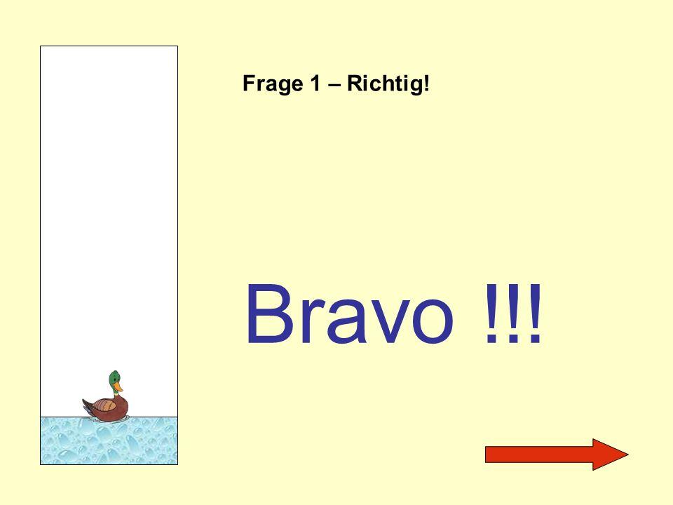 Frage 1 – Richtig! Bravo !!!